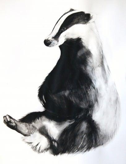 Image of Badger (British Wildlife Series).
