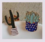 Image of Les pin's: Les cactus et les succulents