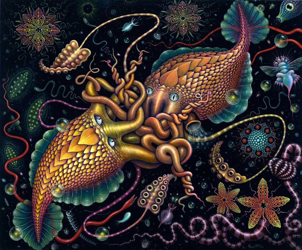 Image of ORIGINAL PAINTING ~ 'Cephalopods' 2016 ~ FRAMED
