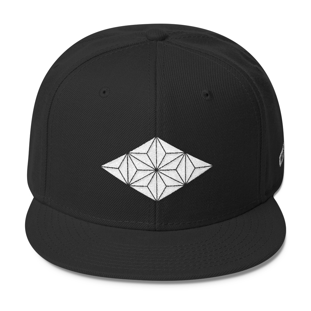 Image of Embroidered Snap Back VI