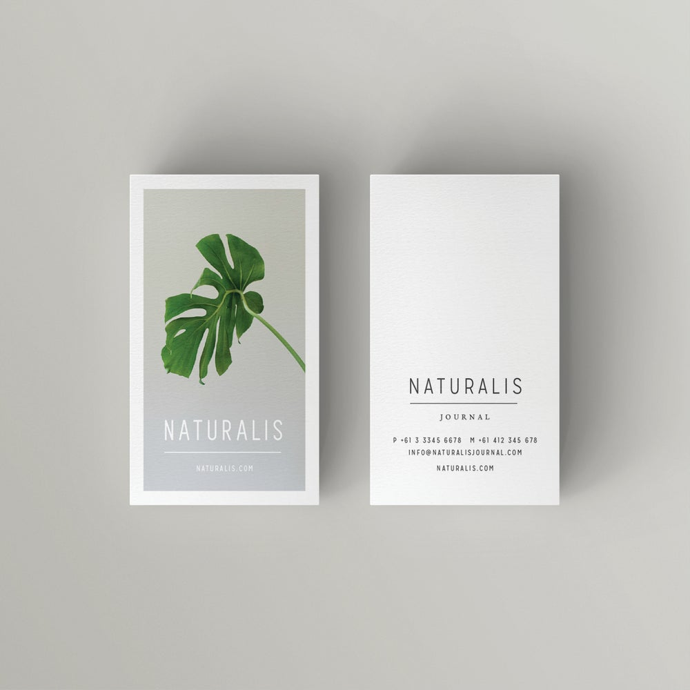 Image of NATURALIS Business Card