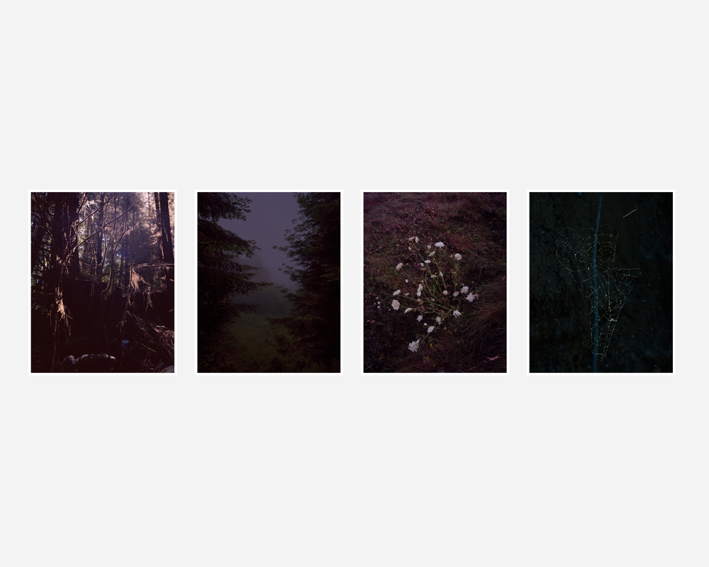 Image of Coley Brown - Deeper Than Night - Special Edition w/ Print