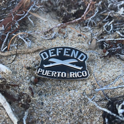 Image of Defend PR Pin