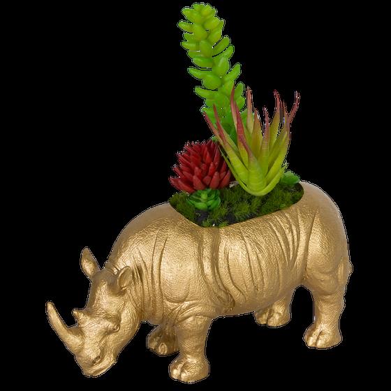 Image of Dinosaur Succulent Planter