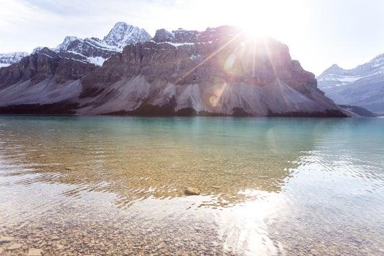 Image of Bow Lake