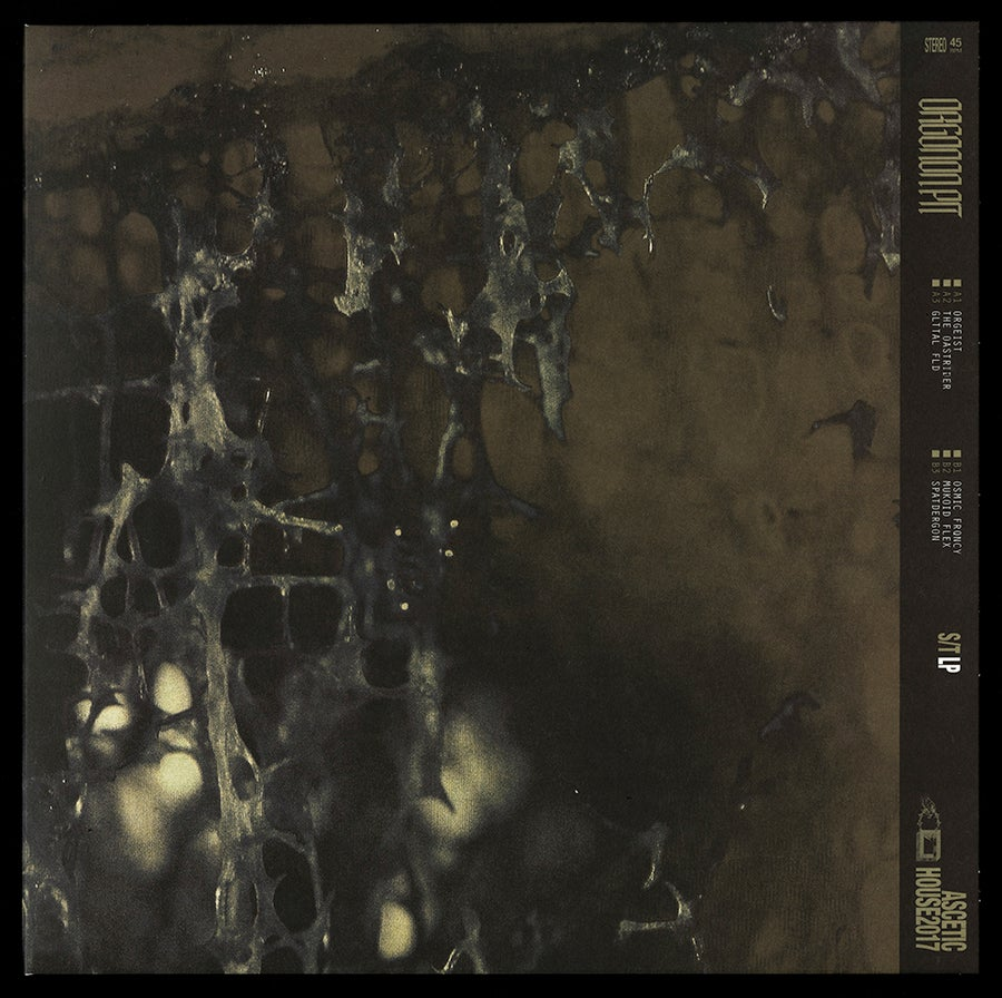 Image of Orgonon Pit 'S/T' LP