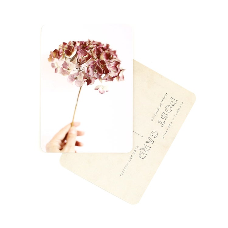 Image of Carte Postale HORTENSIA / ROSE