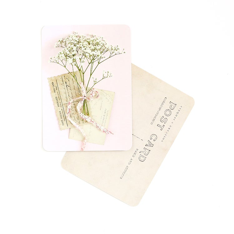 Image of Carte Postale BRINDILLES / GYPSO / ROSE
