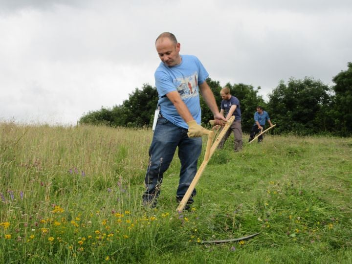Image of Learn to Scythe Friday 7th and Saturday 8th July