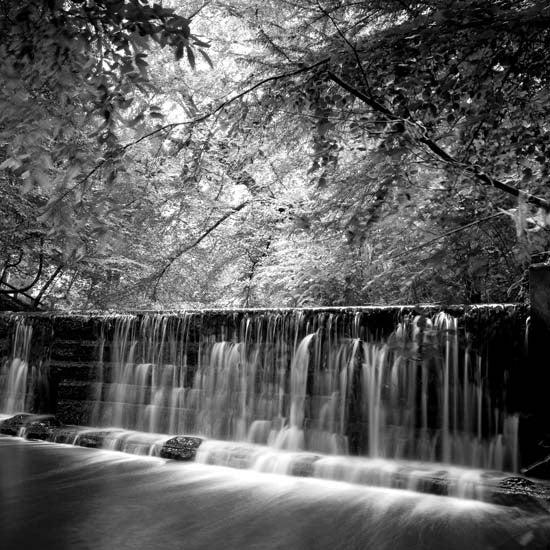 Image of Weir #1 - Jesmond Dene