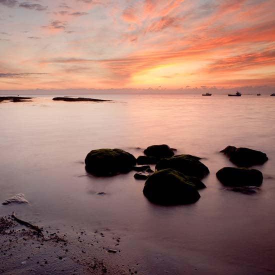 Image of Dawn #1
