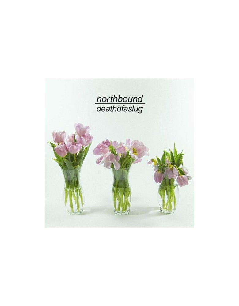 Image of NORTHBOUND - DEATHOFASLUG LP