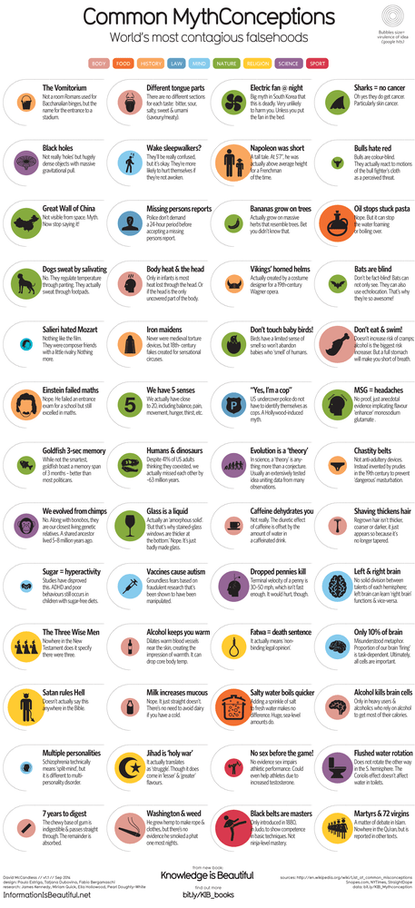 Image of Common Mythconceptions