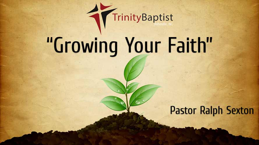 Image of Growing Your Faith