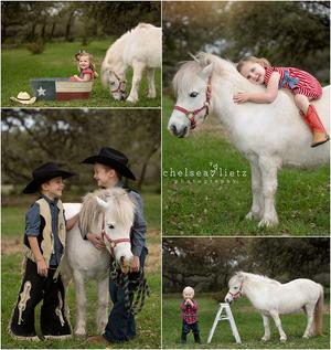 Image of Unicorn or Pony Mini Session