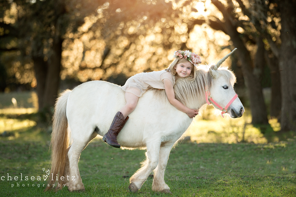Image of Unicorn or Pony Mini Session