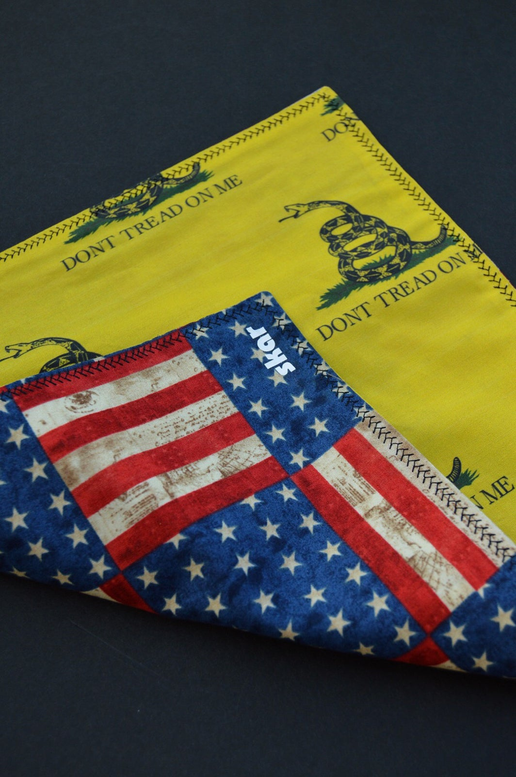 Image of Gadsden and Old Glory