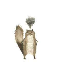 Image of Outraged Squirrel