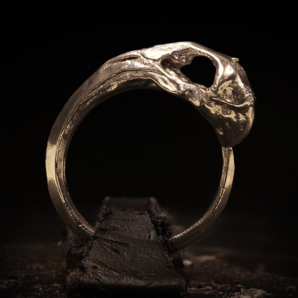 Image of Hummingbird Skullring
