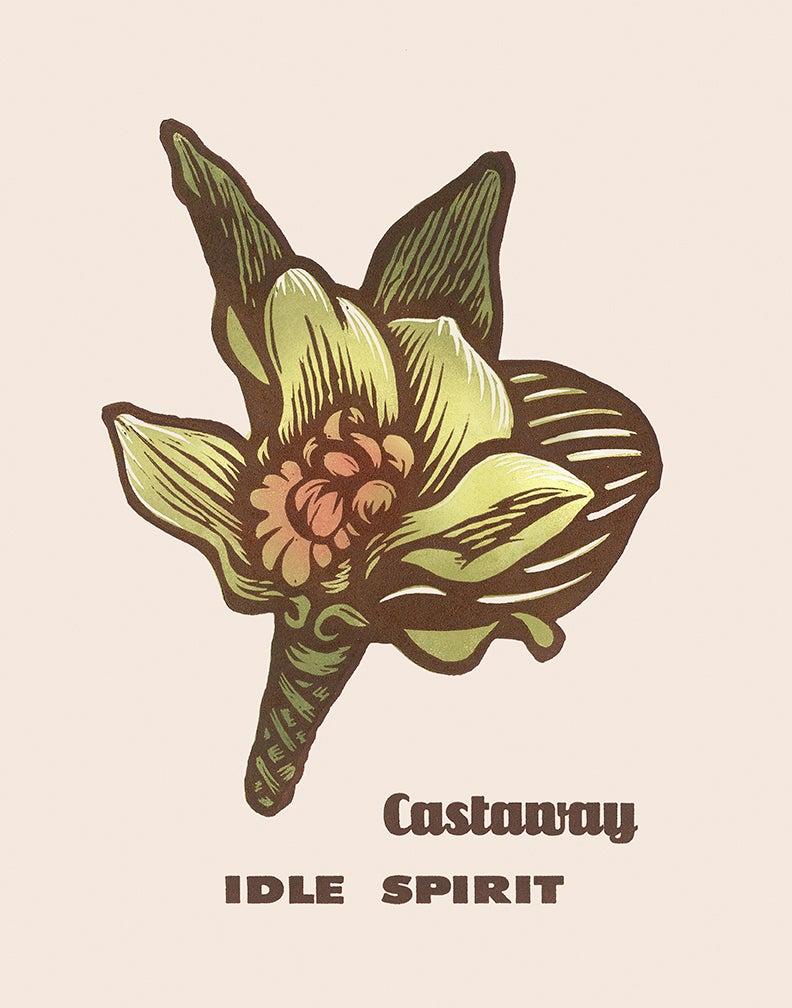 "Image of ""Castaway"""