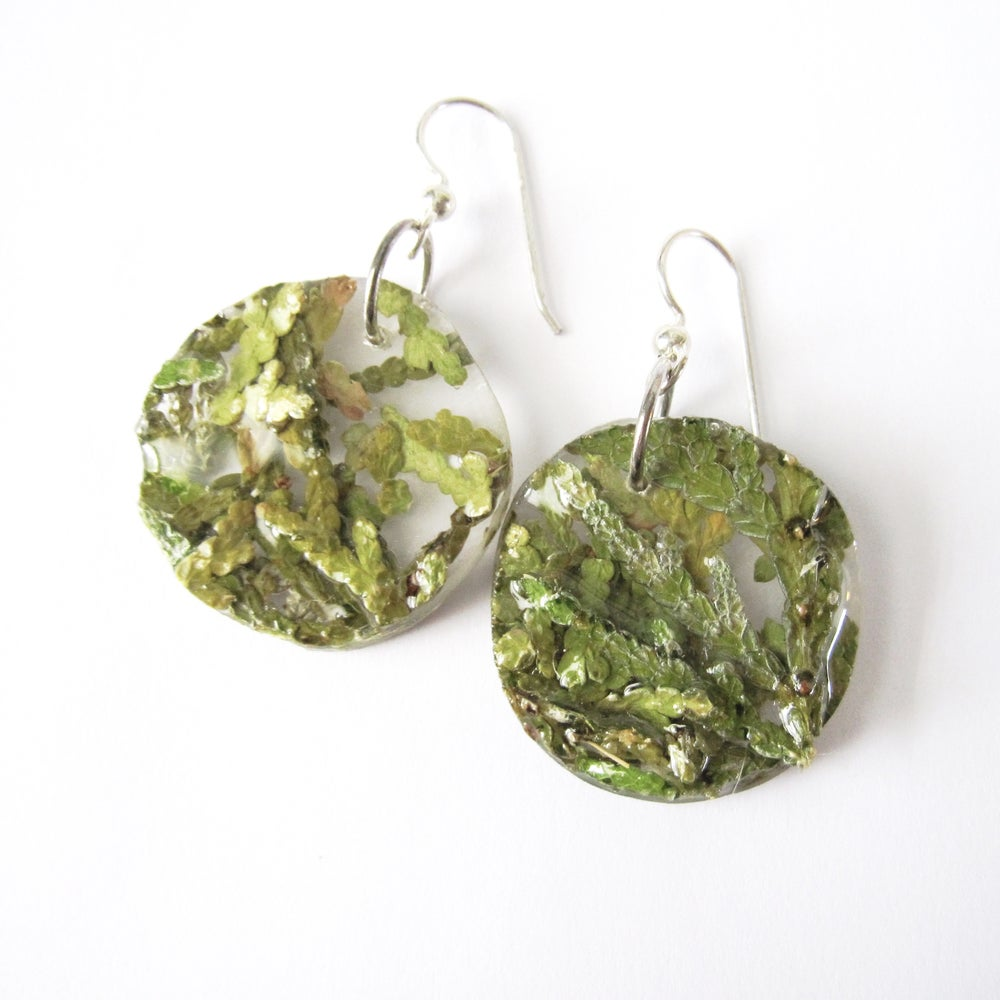 Image of Cedar Awakening Earrings