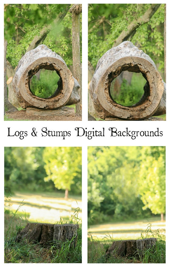 Image of Logs & Stumps Digital Backgrounds