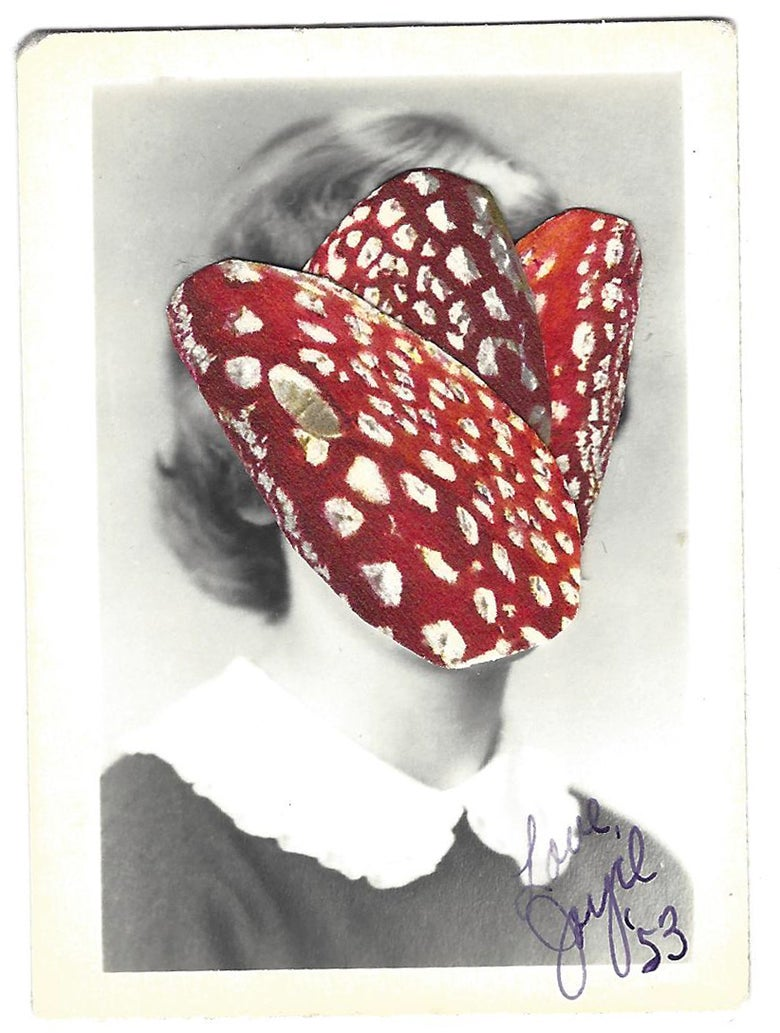 Image of Jamie Rawlings: Red Mushroom Portrait Ed.3/3