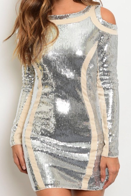 Image of Silver Sequin Dress