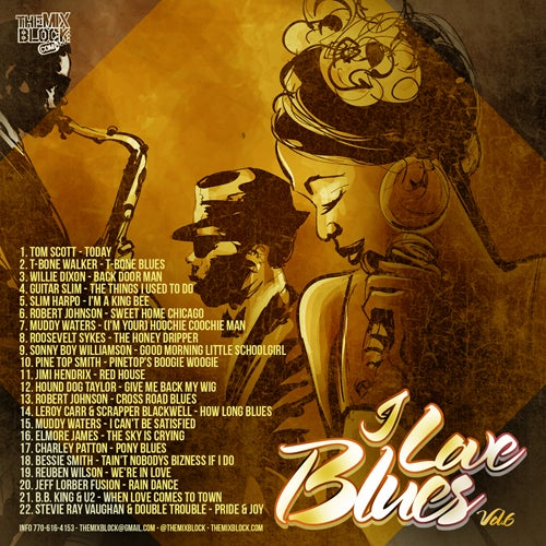 Image of I Love Blues 6