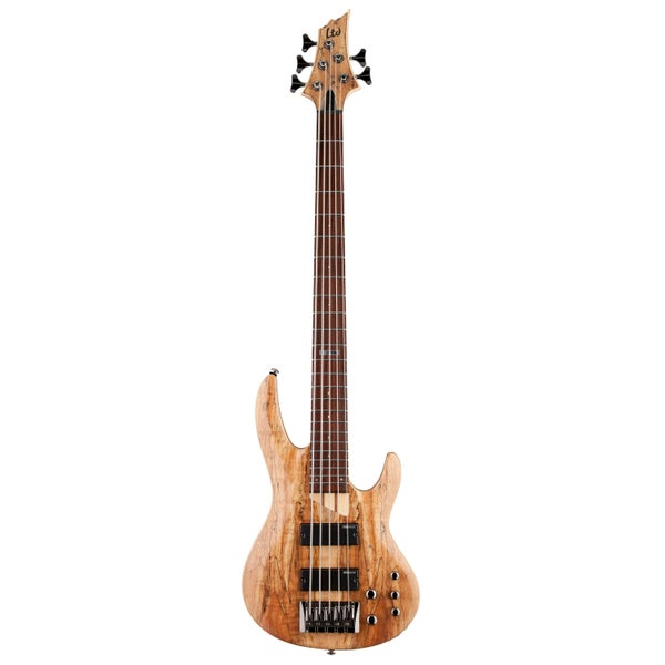 Image of Bass Guitar Learning Software Free Download