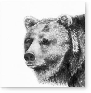 Image of 'Bear Hunt' Grizzly Bear