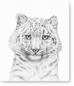 Image of 'Spot's of Hope' - Snow Leopard