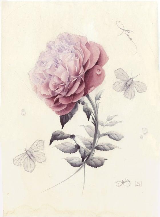 Image of Watercolour Rose. Original work