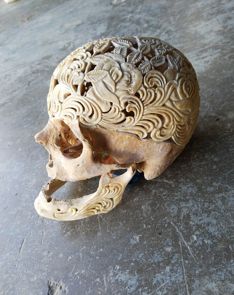 "Image of ""Bed of roses"" carved geriatric human skull"