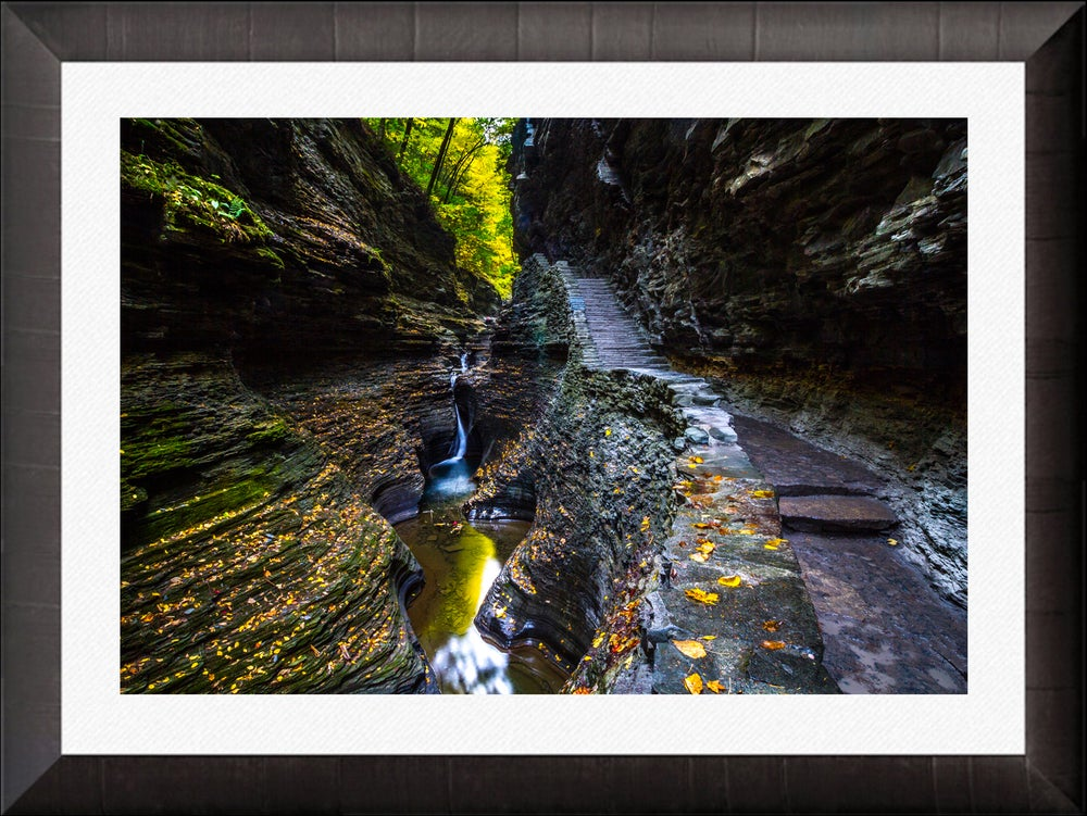 Image of Glens Gorge Dark Oak