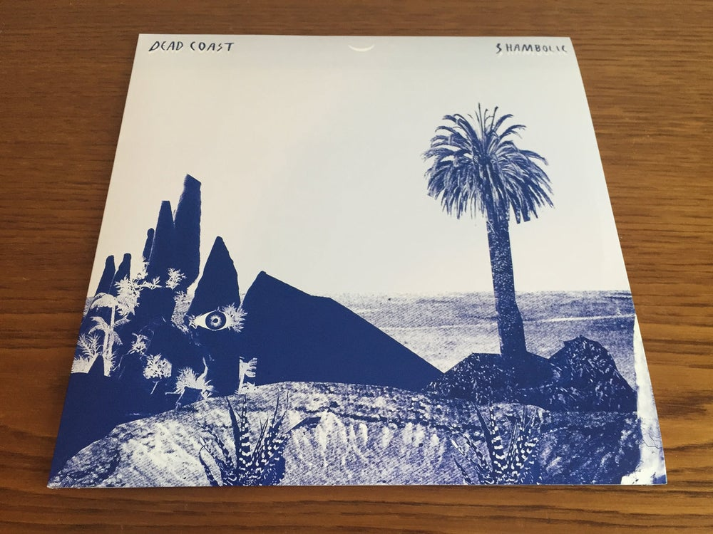 """Image of """"Shambolic"""" LP, 1st Press. SOLD OUT!"""