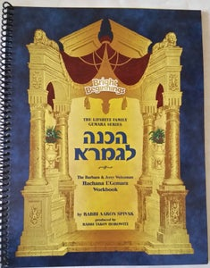 Image of Introduction to Gemara for ANY Mesechta