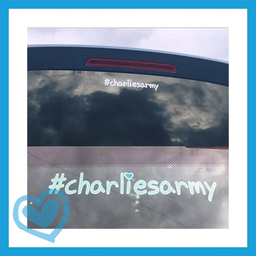 Image of Car Stickers - #charliesarmy