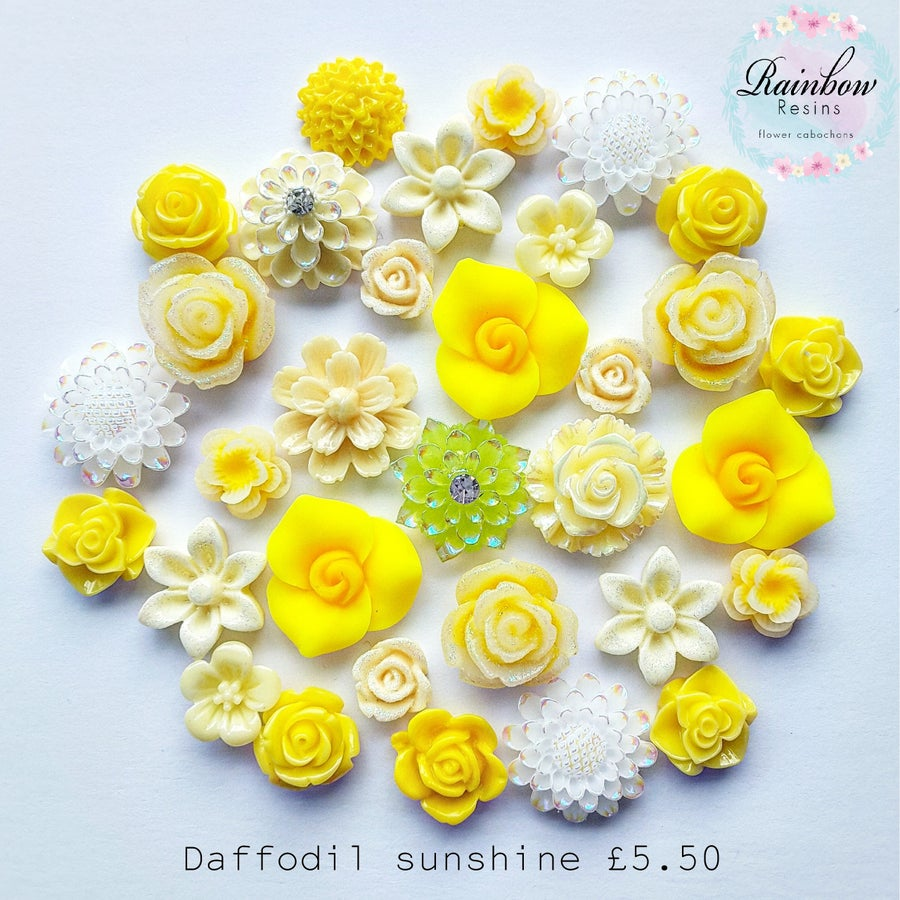 Image of Daffodil sunshine