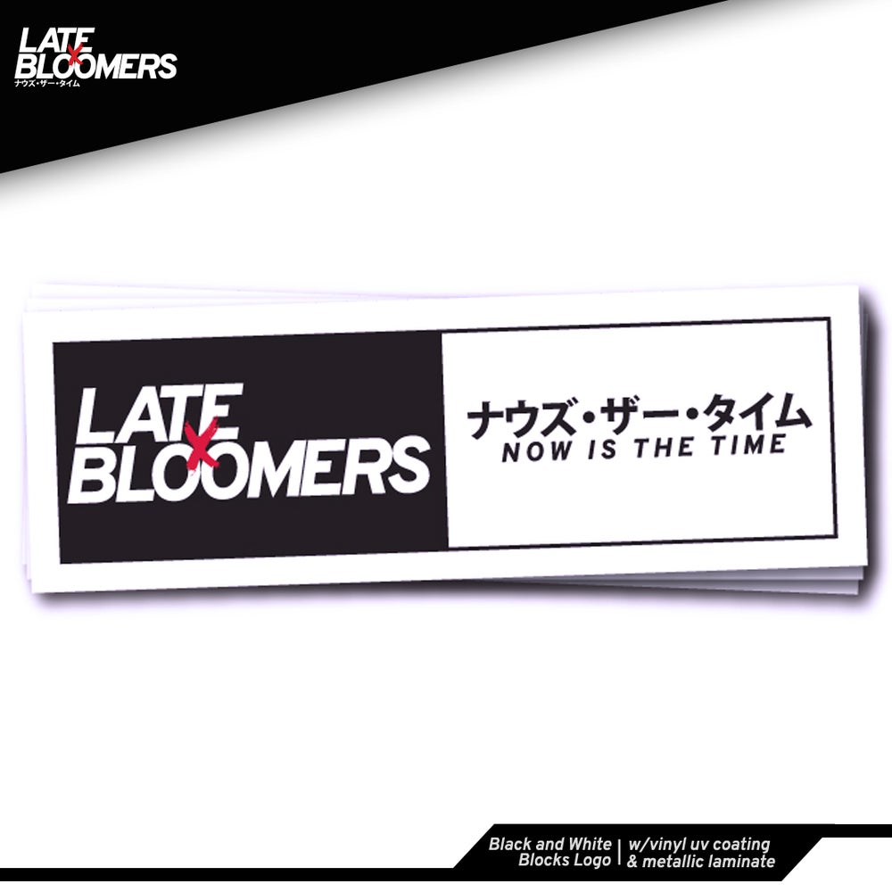 Image of Black and White Blocks Logo | w/Vinyl UV Coating & Metallic Laminate