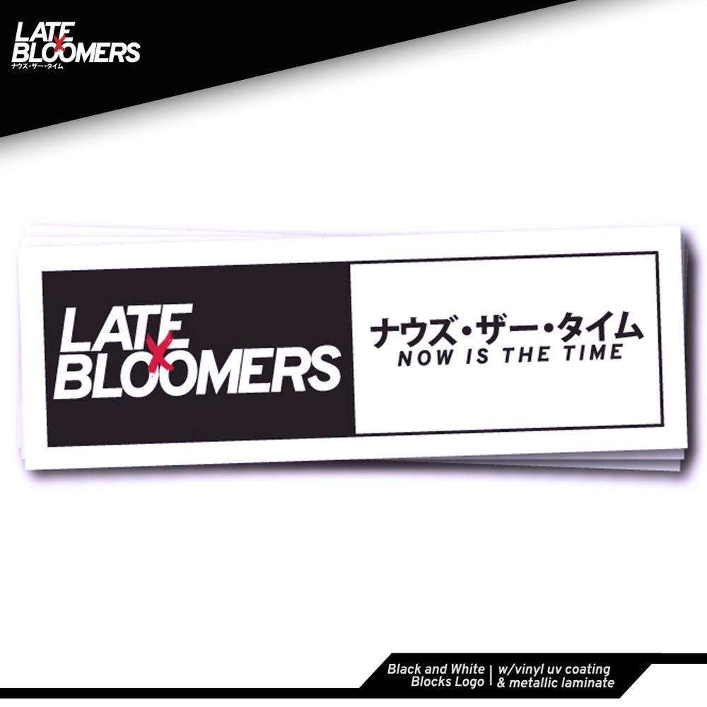 Image of Black and White Blocks Logo | w/Vinyl UV Coating & Metallic Laminate