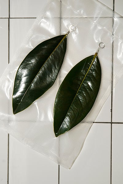 Image of KEEF PALAS II - MAGNOLIA LEAVES