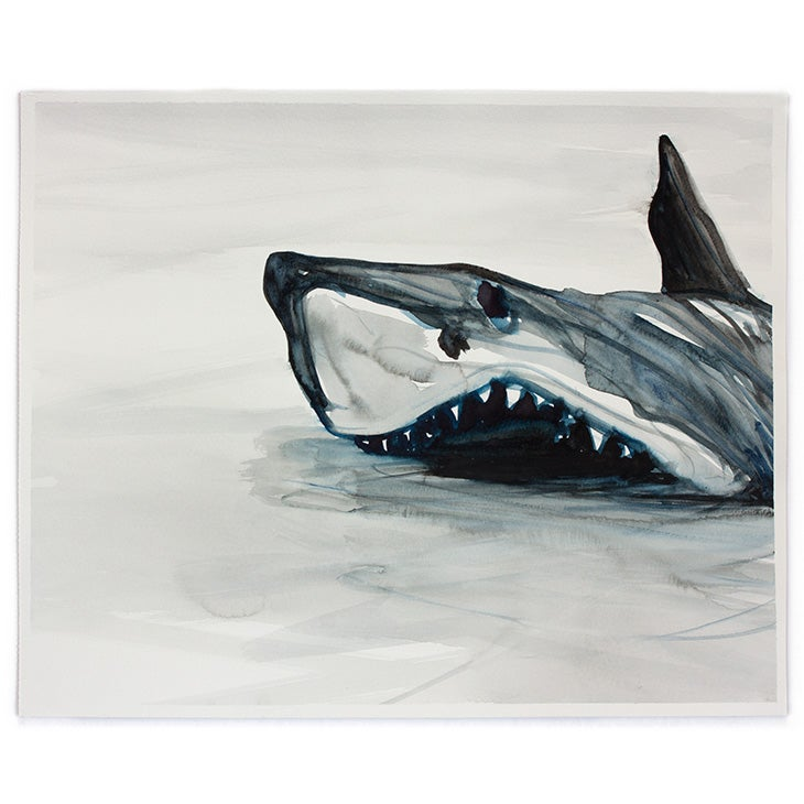 Image of SIMON SCHRIKKER Great White #1