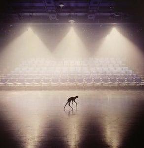 """Image of anom vitruv - 'untitled' 10"""""""