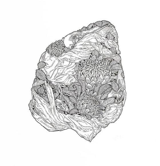 Image of 'Waratah' A3 Print