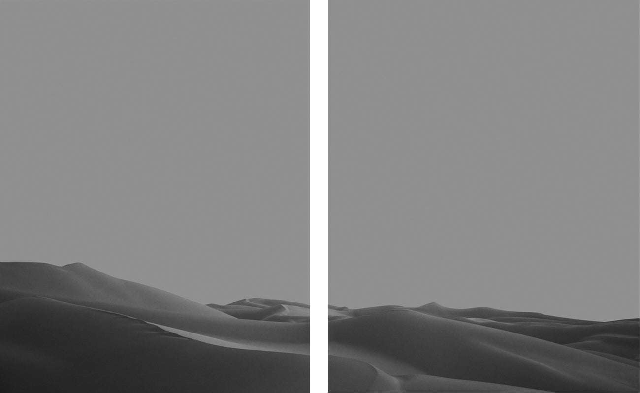 Image of Imperial Dunes III Diptych