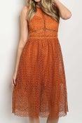 Image of Nita Mesh Dress