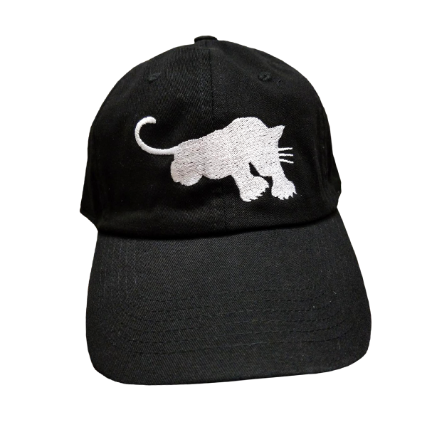 Image of Black Panther Dad Hat