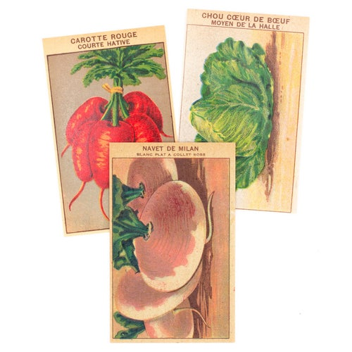 Image of 1920's French Vegetable Seed Labels