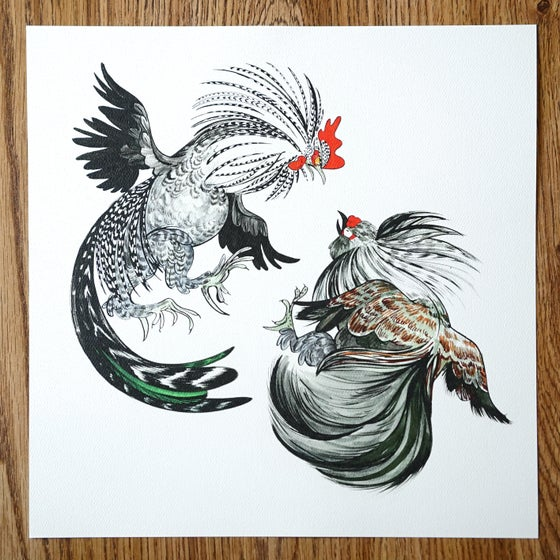 Image of Rooster Fight